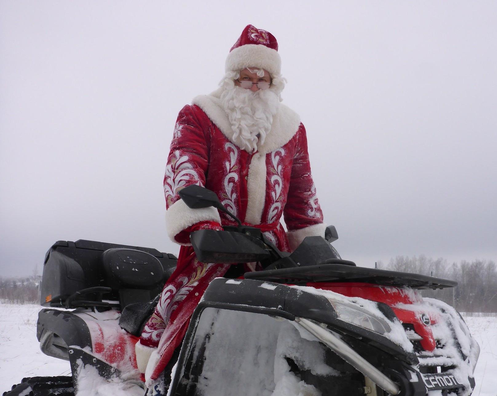 Дед мороз елочку принес слова